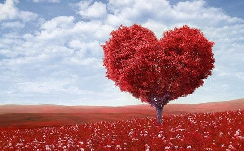 关于表达爱意的常用日常英语口语900句学习1.jpeg