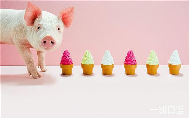 猪的英文竟有五种说法,并且大部分是贬义! (3).jpg