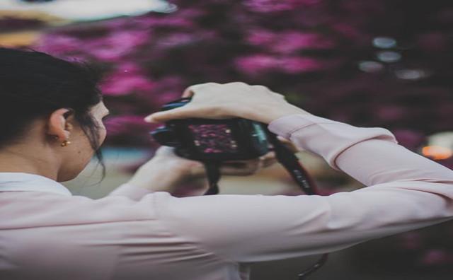 pexels-photo-113698_副本.jpg
